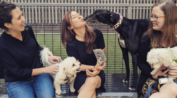 Decoding Dog Behavior in D.C. Parks